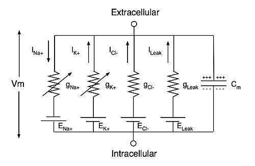 Схема эклектрической цепи