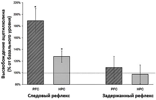 Выброс ацетилхолина при успешной выработке рефлексов