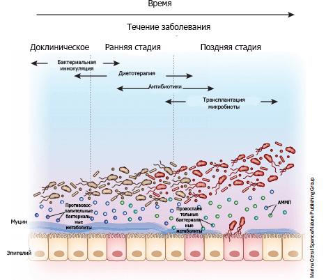Микробная терапия