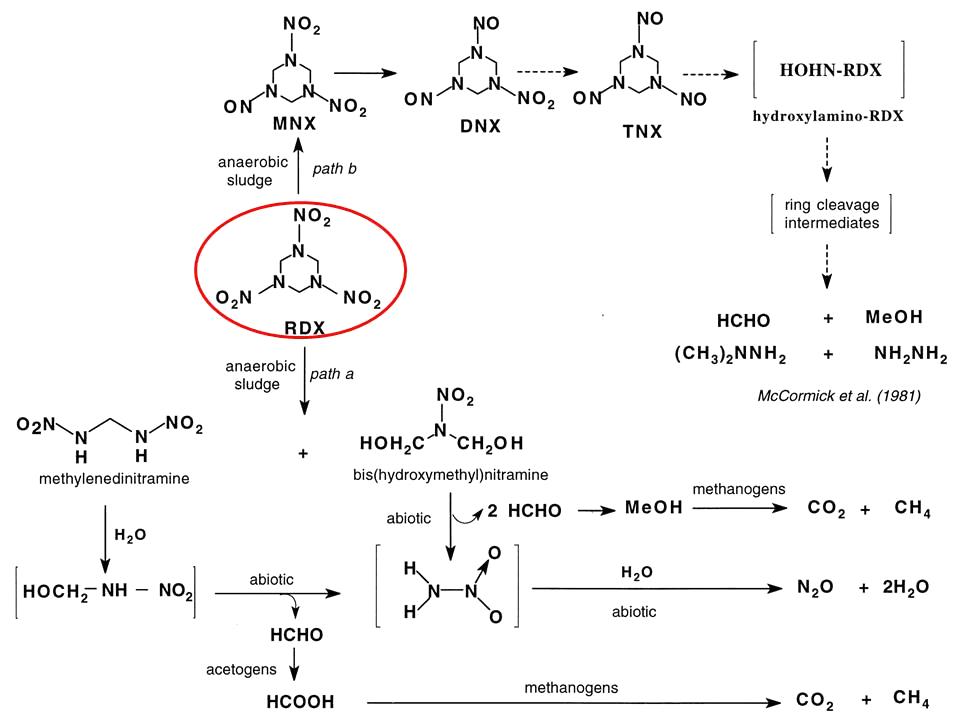 Анаэробная биодеградация гексогена