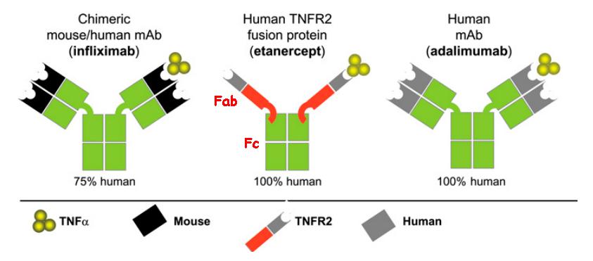 Примеры блокаторов TNF