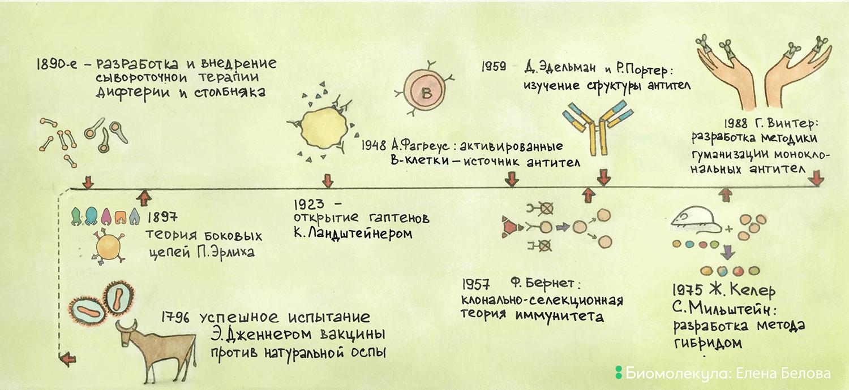 История открытия и применения антител