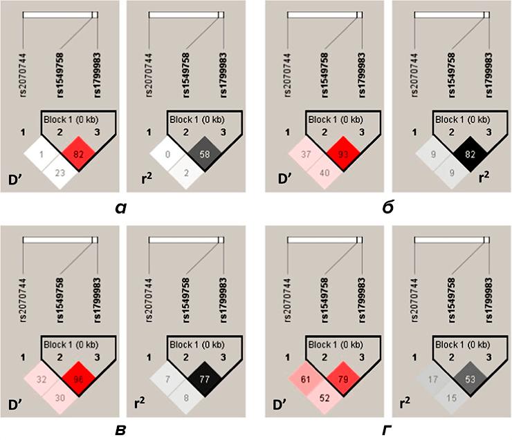 Анализ гаплотипов генетических вариантов NOS3 и МС у здоровых людей и пациентов с шизофренией