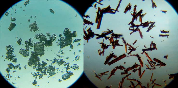 Кристаллы бета-циклодекстрина