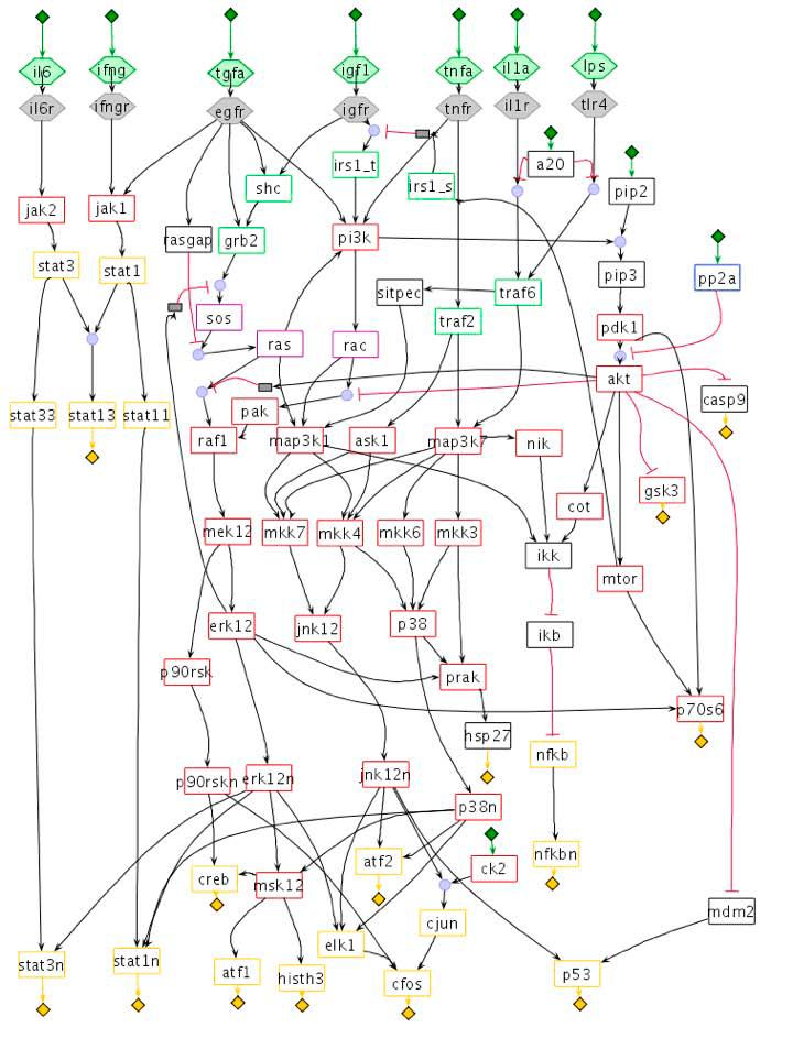 Пример участка сигнальной сети типа PIN