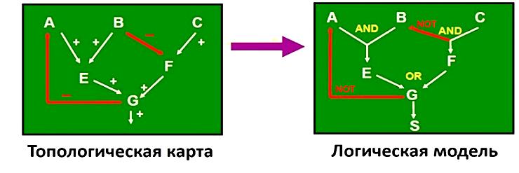 Переход от качественной модели сигнальной сети к логической модели
