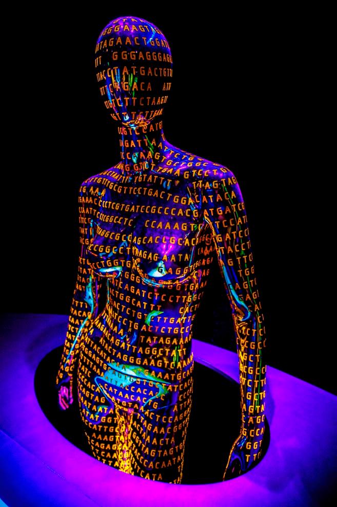 Арт-проект на выставке «Геном — расшифровка кода жизни»