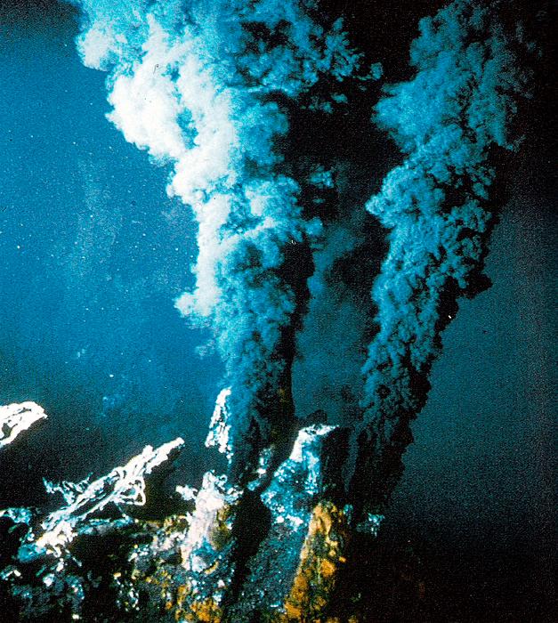 Гидротермальные источники срединно-океанических хребтов — «черные курильщики»