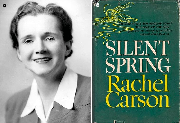 Рэйчел Карсон и ее книга