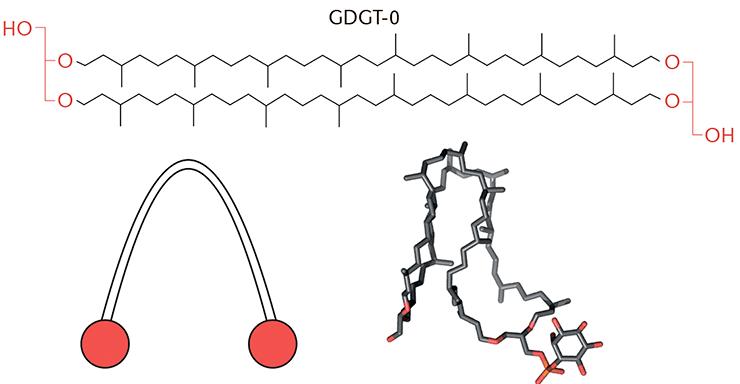 GDGT-0