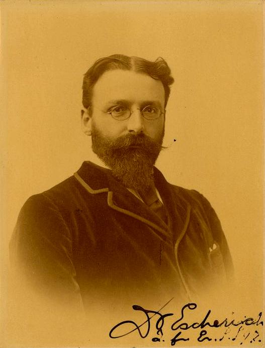 Теодор Эшерих