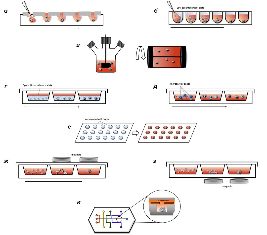 Методы получения сфероидов