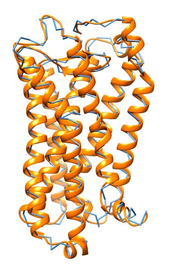 Моделирование тромбоксанового рецептора мыши