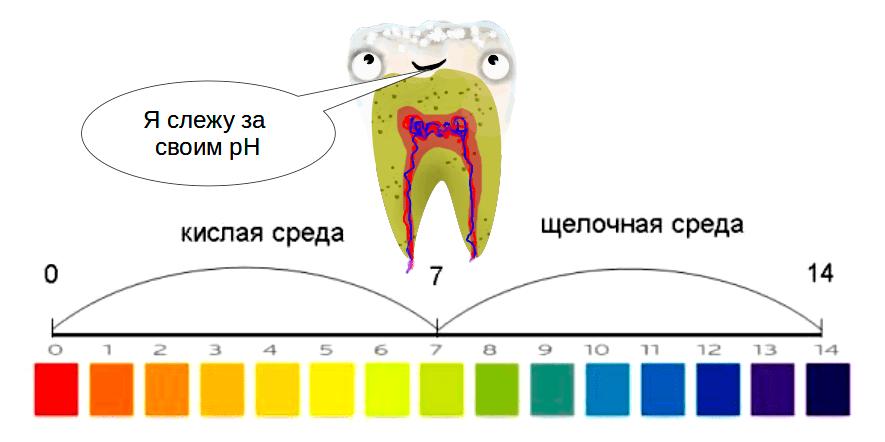 Для зубов очень важен показатель рН