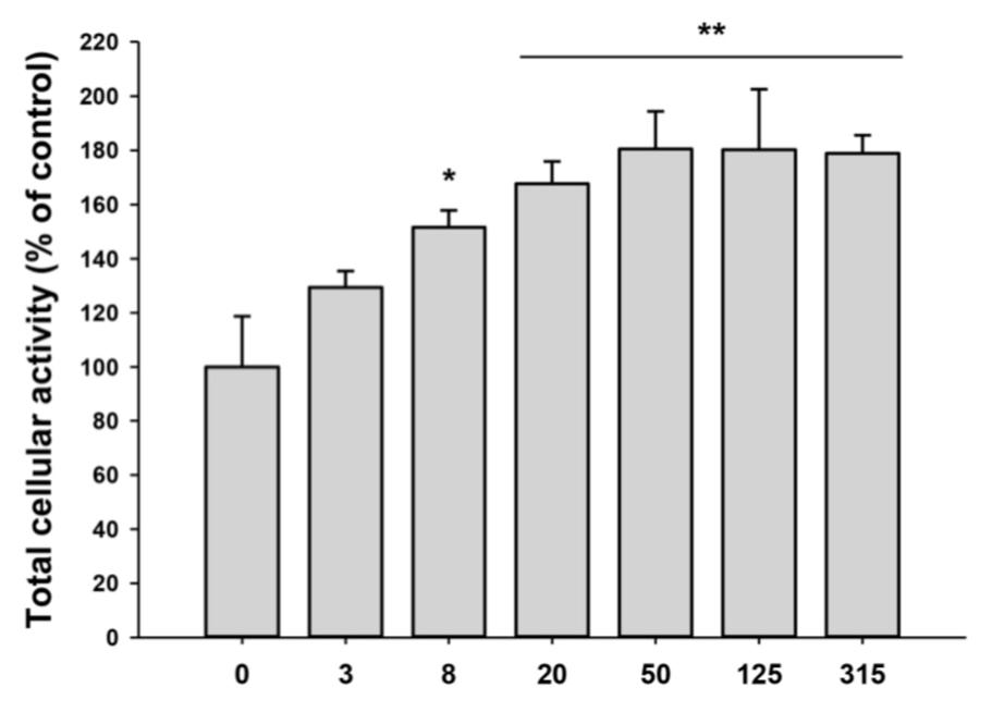 Влияние иПСК-экзосом на пролиферацию фибробластов