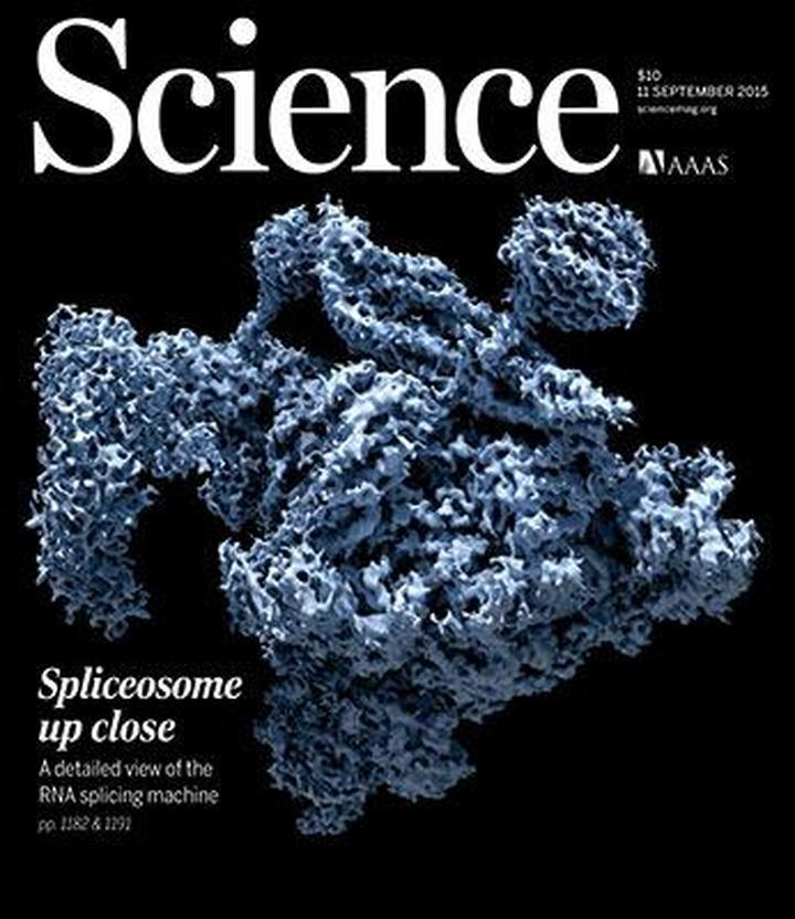 daily southt science magazine - 475×604
