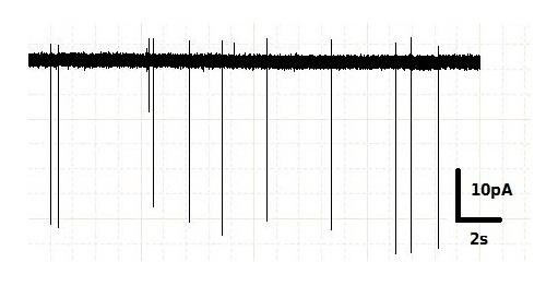 Пример записи, получаемой при электрофизологической регистрации активности нейрона