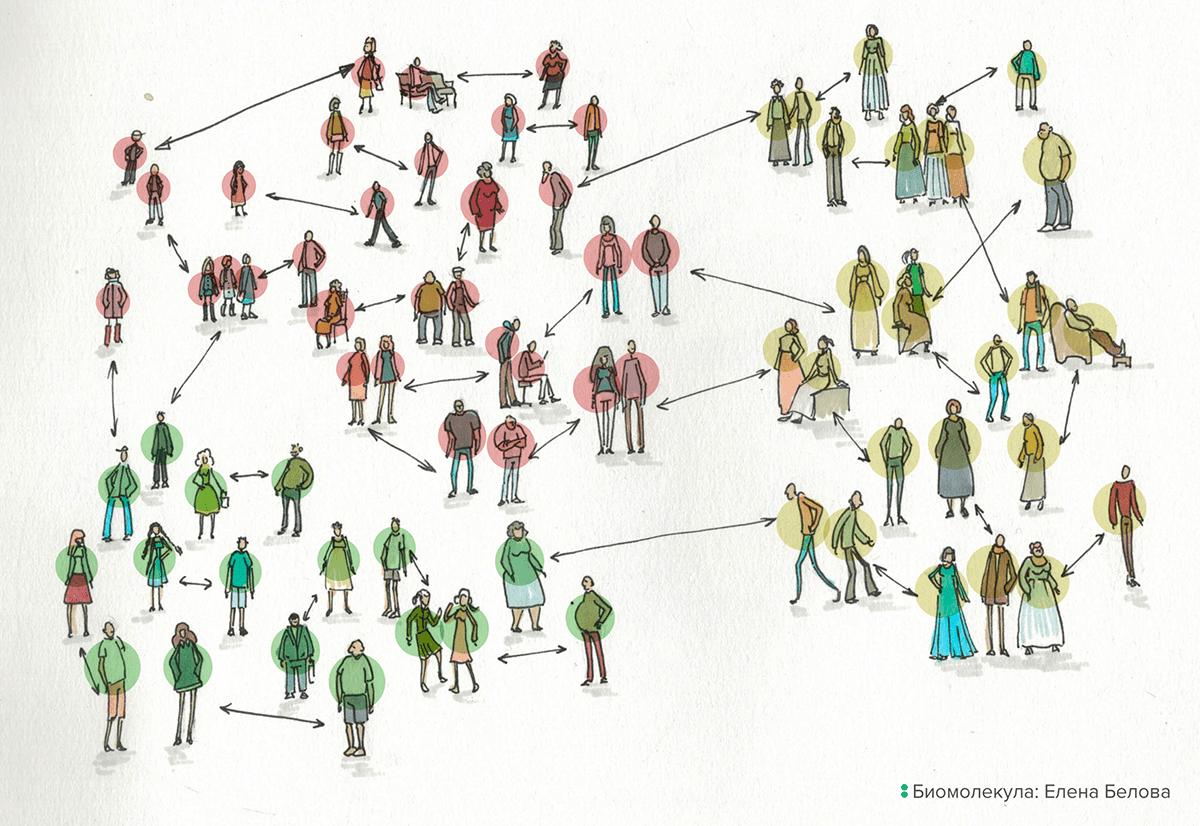 Популяцией считается группа, в которой не менее 50% браков заключается между ее членами