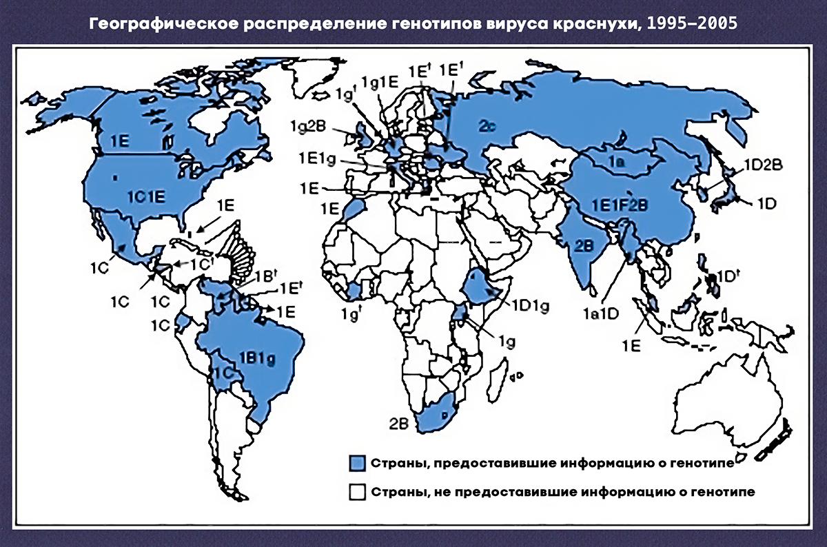 Распределение генотипов вируса краснухи по странам в 1995–2005 годы