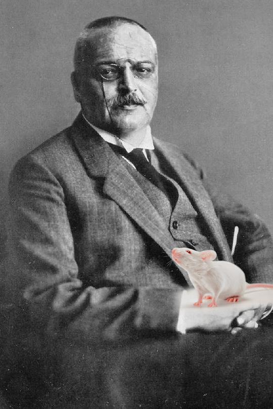 Алоис Альцгеймер