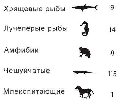 Количество возникновений живорождения в разных группах позвоночных