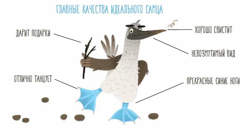 Fig.2.jpg